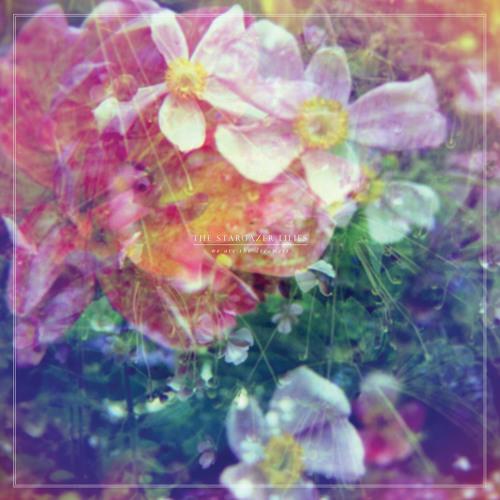 The Stargazer Lilies - Endless Days
