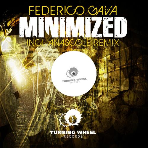 Federico Gava - Minimized