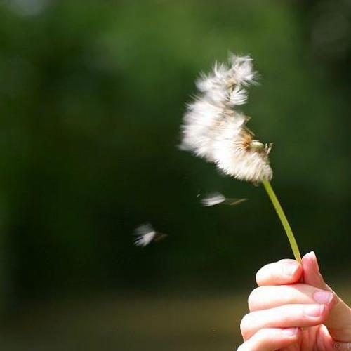 Khi người lớn cô đơn - Phạm Hồng Phước