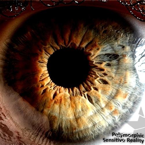 Polymorphic -  Sensitive Reality (FREE)