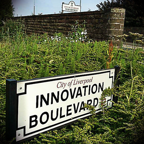 The Girl Who Lived By Innovation Boulevard