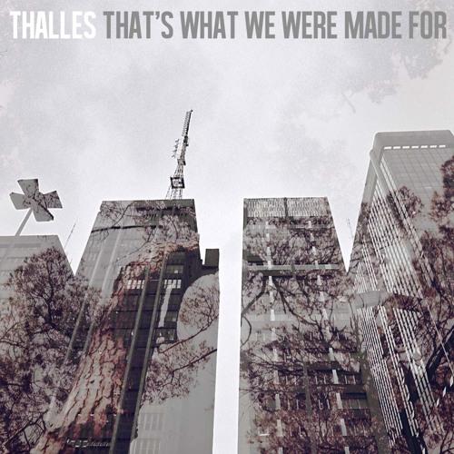 Thalles - Everybody Dies