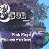 Pink Floyd - Wish You Were Here (3gor Remix)
