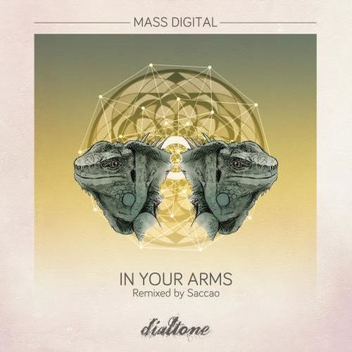 Mass Digital - In You Arms EP - [Dialtone Records]