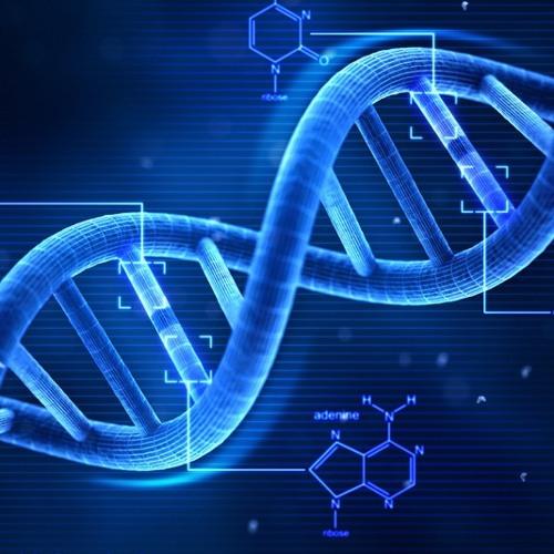 David Meiser - DNA