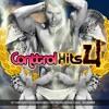 ConttrolHits Vol.4 2013