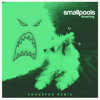 Smallpools - Dreaming (Zookëper Remix)