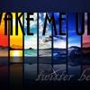 Wake Me Up- Remix Twister Beats 2013 Tribal Beats