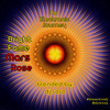 DJ RORO - BrightFameMarsRose...An Electronic Journey