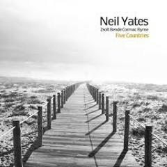 Neil Yates: Flutter And Flight