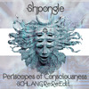 Shpongle:Periscopes of Consciousness: Schlang Re:Re:Edit
