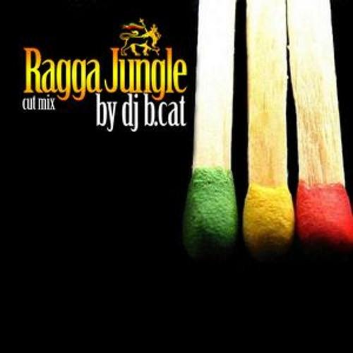 Ragga - Jungle Open Air Cut Mix