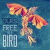 Free as a bird EP