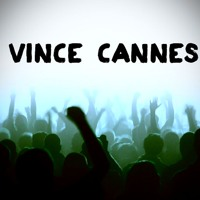 Electro House 2013 [Flow Sound] By Vince Cannes