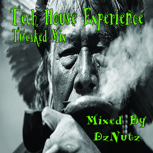Freestyles Vol. 2 - Tech House Experience (Tweaked Mix)