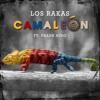 Camaleón feat. Frank Nino
