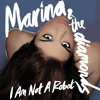 Download: Marina and the Diamonds - I Am Not a Robot (Official Instrumental & Acapella) (Lossless)