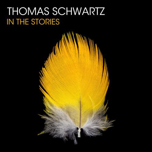 In The Stories [Original Mix] - Thomas Schwartz + Fausto Fanizza