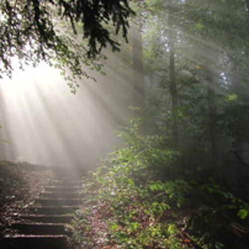 MestoN - Weg des Lichts (Original Mix)