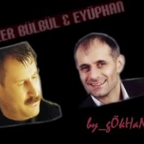 Azer Bulbul Eyuphan