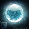 5 and Dime Recordings - Natural Patterns EP - 5D023 - Out Now