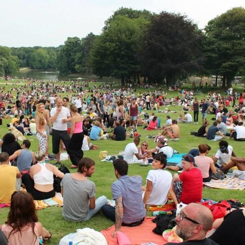Fady One SunnyMix 2pm at Piknik Brussels Bois de la Cambre 14.07.2013