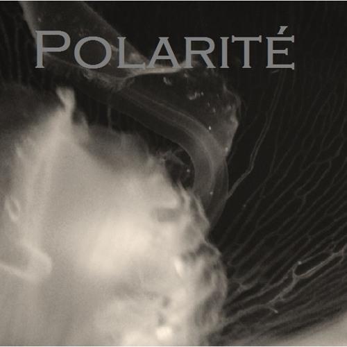 Polarité 4 - Bonjour Tristesse