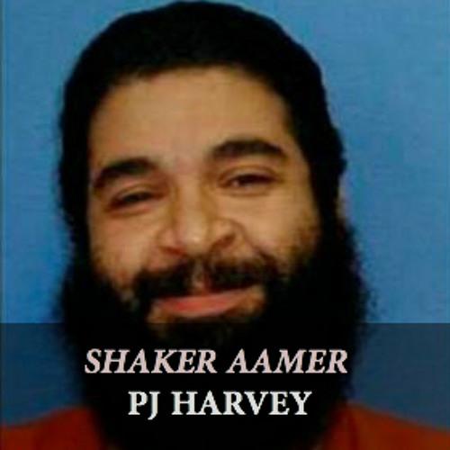PJ Harvey - 'Shaker Aamer'