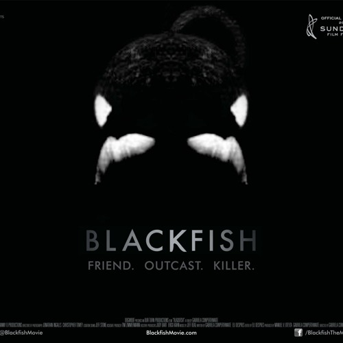 Blackfish: Former SeaWorld Trainer Samantha Berg on Irish National Radio Newstalk 106-108 FM