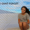 I cant forget you