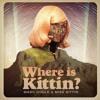Marc Houle & Miss Kittin - Where is Kittin? Accapella 120 BPM