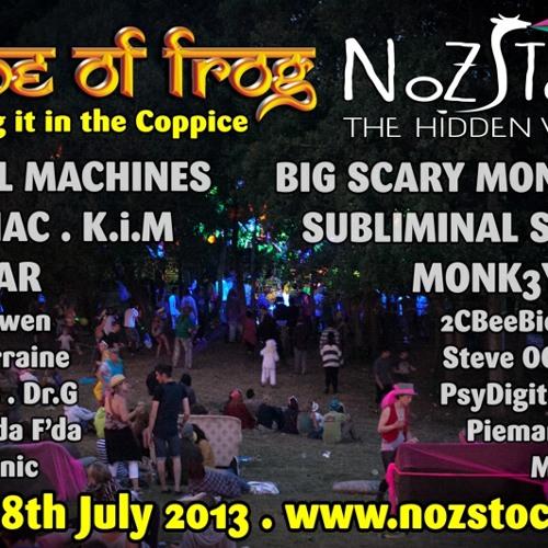 Frog Amplexus - Recorded at Nozstock Festival 2013