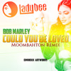 Bob Marley - Could You Be Loved (Lady Bee Moombahton Remix)