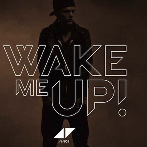 Avicii vs. Emeli Sandé - Wake me up vs. Next to me (Robb-C Mashup)