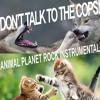 ANIMAL PLANET ROCK INSTRUMENTAL