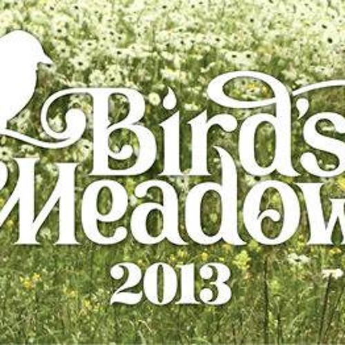 Stan Yaroslavsky Live Promo For Birds Meadow