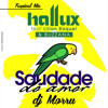 SAUDADE DO AMOR Hallux Makenzo Feat. Lilian Raquel & Buzzana (dj Morru Tropical Remix)