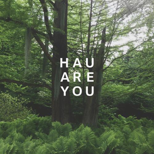 Hau Are You - Ein Delphine Hauen Mixtape