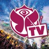 Avicii - Tomorrowland 2013 - Live Set