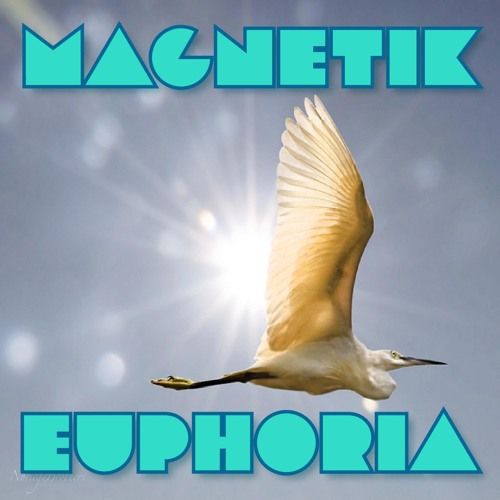 Magnetik - Euphoria (Original Mix)