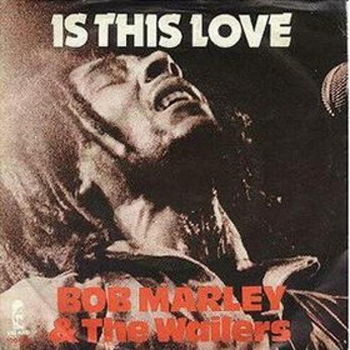 Bob Marley - Is This Love (Dub Remix By PUNK Inc.)