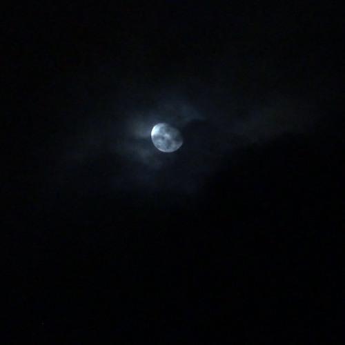 Observaciones en torno a la noche