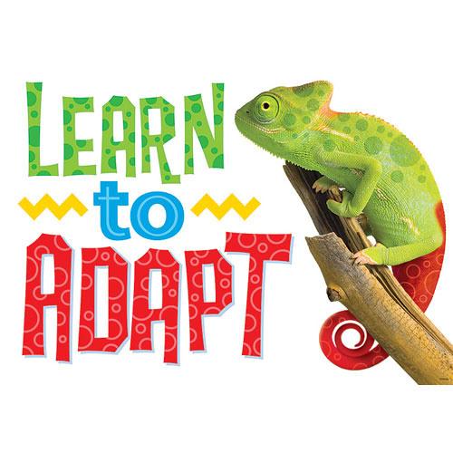 Adaptable -WIP-