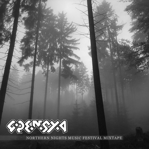GRENSTA - Silent Disco Live Set from Northern Nights Music Festival