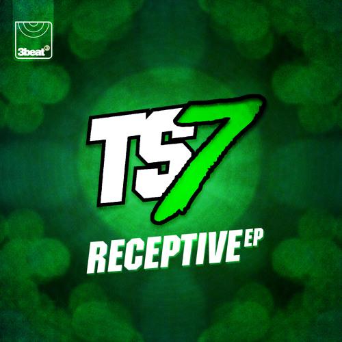 TS7 - Vision (Original Mix)