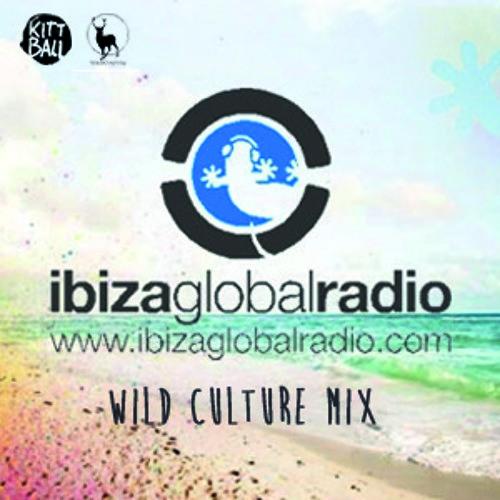 Wild Culture Mix for the Kittball Radio Show on Ibiza Global Radio [04.08.2013]