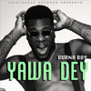 Burna Boy (@burnaboy) - YawaDey (Produced By LeriQ)