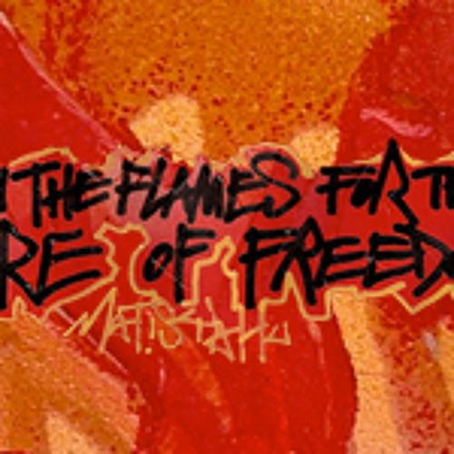 Matisyahu - Fire Of Freedom - ViGoReMiX