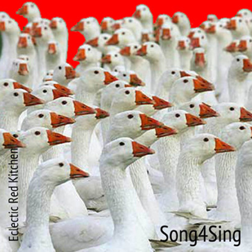 Eclectic Red Kitchen - No Sense People - Song4Sing Ep.2013