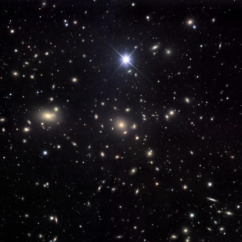 Konnasse D'étoile Filante